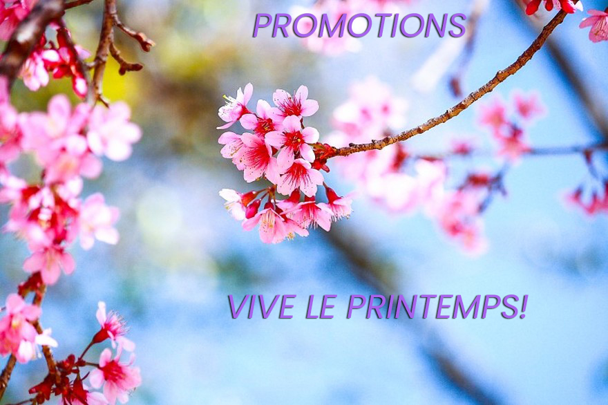 promotions for spring